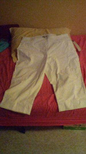 Designer Larry Lavine Midpants size 20 with tag marked 69.00 and will take half price or best offer for Sale in Phoenix, AZ