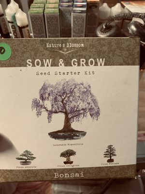 Bonsai grow your own for Sale in Waterbury, CT
