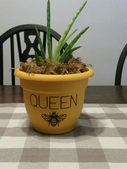 Real Aloe Plant In Cute Bee Pot for Sale in Wellington,  OH