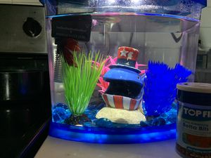 Beta fish tank food filter included for Sale in Atlanta, GA