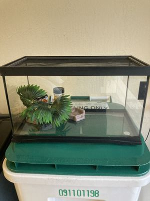 Reptile Terrarium - 10 Gallon for Sale in Tamarac, FL