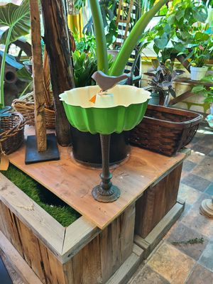 Bird feeders/succulent planters for Sale in Kingsburg, CA