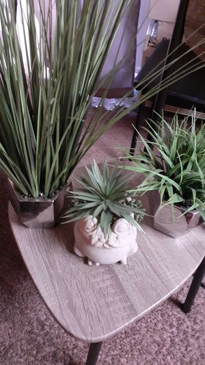 Decorative plant pots for Sale in Columbus, OH