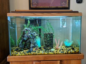 40 gal fish tank with stand, light, filter, heater, etc. Ready for fish for Sale in Poway, CA