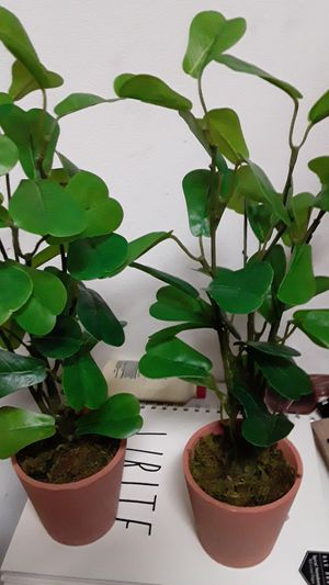 Beautiful pair of artificial Greenery plants in clay pots absolutely gorgeous for indoor or out on a tabletop or Shelf for Sale in Oviedo, FL