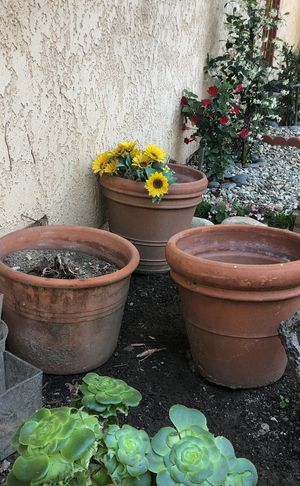 Big Flower pot for Sale in Los Angeles, CA