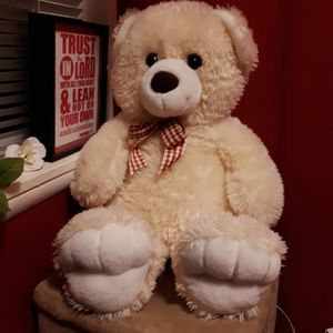 Teddy Bear, Medium Size for Sale in Bellevue, WA