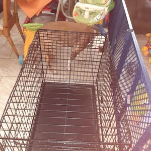36 Inch Dog Cage for Sale in Fort Lauderdale, FL