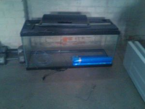 Fish Aquariaum (Tank) (with light parts NO LIGHTBULBS)included wallpaper for Sale in Dearborn, MI