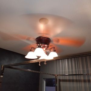 Harbor Breeze Fan With Light kit for Sale in Land O' Lakes, FL