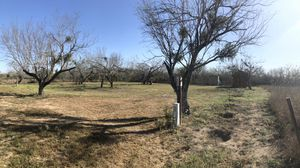 3 Lots Mirando City for Sale in Bruni, TX
