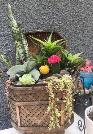 Vintage basket arrangement! for Sale in Los Angeles, CA