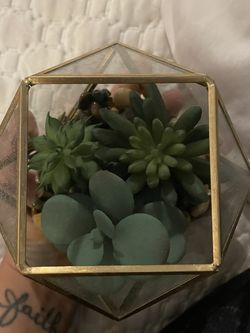 Decorative Faux Succulent Plant for Sale in Arlington,  VA