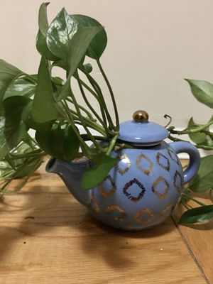Ivy In Tea Cup Pot for Sale in Silver Spring, MD