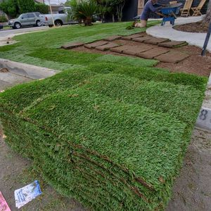We renew your lawn... freee estimatess for Sale in Bellflower, CA