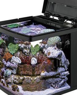 16 Gallon Biocube Aquarium Plus Live Rock And Sand for Sale in Milpitas,  CA