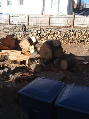 12-15 Tons of Fire wood for sale! for Sale in Waterbury, CT