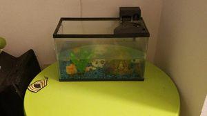 5 gallon fish tank for Sale in Tampa, FL