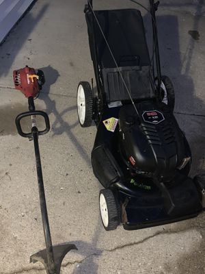 Lawnmower and weed eater for Sale in Beach Park, IL