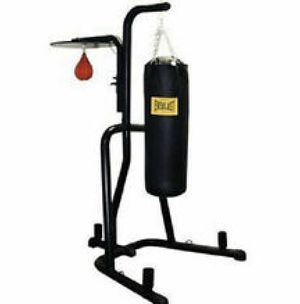 Everlasting Punching Bag /Speed Bag on a Stand . for Sale in Fife, WA