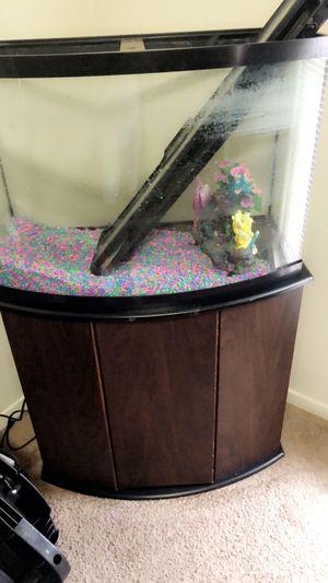 Fish tank for Sale in Columbia, MO