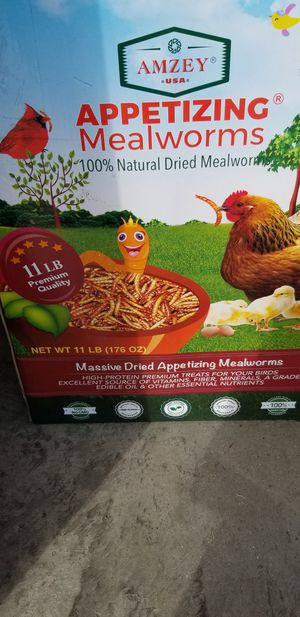 Appetizing Mealworms for Sale in Smyrna, TN