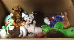 TY stuffed animals- various sizes for Sale in Brooklyn Center, MN