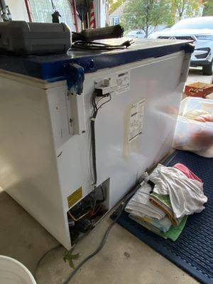 Free deep freeze- needs new electrical cord for Sale in Vienna, VA