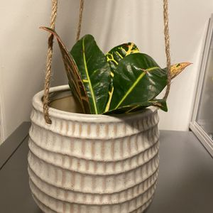 """5 1/2"""" Ceramic Hanging Pot for Sale in Spring Valley, CA"""