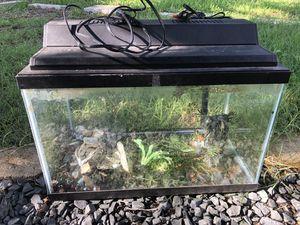 10 Gallon Aquarium/Fish Tank Plus Accessories for Sale in Round Rock, TX