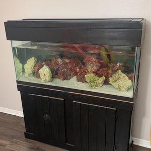 Fish Tank For Sale for Sale in Santa Ana, CA