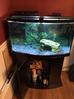 45 gallon tank for Sale in Rockville, MD