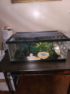 Long Reptile Tank With Accessories and Lamps for Sale in Brooklyn, NY