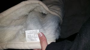 48 x 60 NEW furry blanket for Sale in Chicago, IL