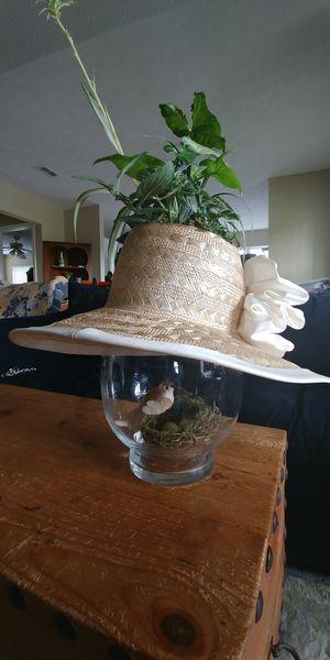 Unique live plant arrangement in a hat for Sale in Nashville, TN