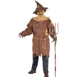 Adult scare crow costume (no pitchfork) for Sale in Chicago, IL