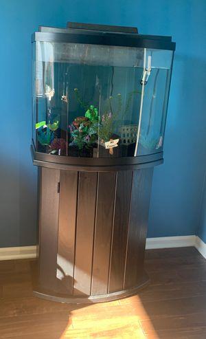 Complete 30 Gallon Fish Tank Aquarium for Sale in Montgomery, IL