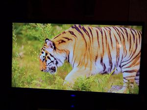 32 inch Flatscreen, Westinghouse for Sale in Wichita, KS
