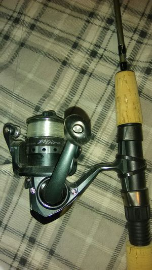Fishing pole light weight for Sale in Albuquerque, NM