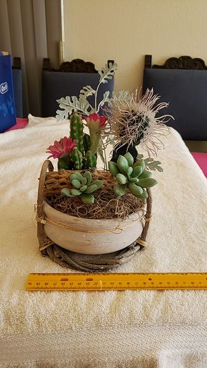 Faux Potted Cacti Cactus in Pot in Basket Read Below for Sale in Upland, CA