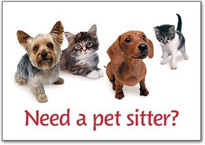 pet sitter for Sale in San Diego, CA