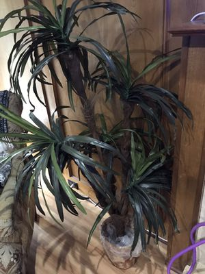 Fake plant for Sale in Rowlett, TX