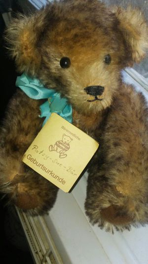 Collecter bear for Sale in Charlotte, NC