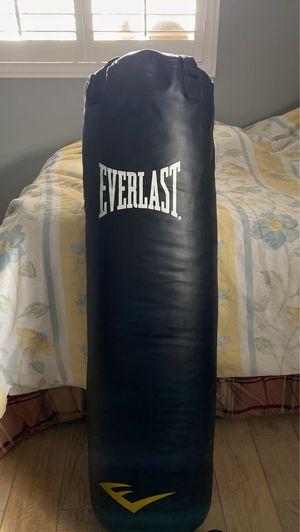 Everlast punching bag 100lbs for Sale in Phoenix, AZ