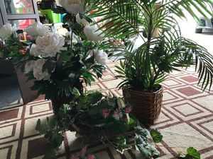 Three fake plants for Sale in Clermont, FL