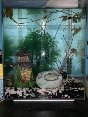 Tetra 3 gallon cube shaped aquarium with decor for Sale in Renton, WA