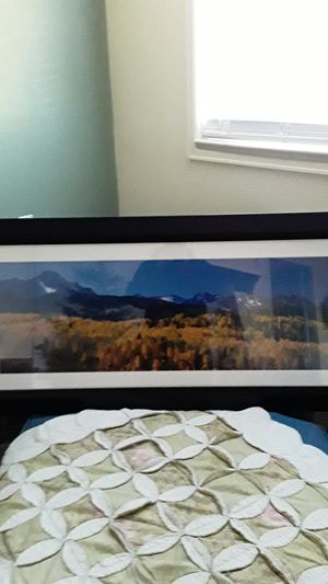 Beautiful framed picture of the Colorado mountains with the aspens in brilliant colors for Sale in Littleton, CO