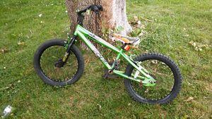 Avigo kids bike for Sale in Grove City, OH