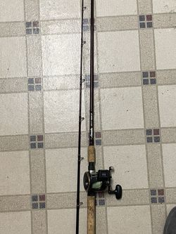 9ft Lamiaglas Fishing Pole With A Dawa Level Line Reel for Sale in Canby,  OR