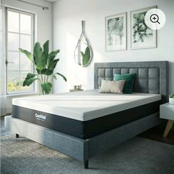 12 Inch Queen Mattress for Sale in Cleveland,  OH